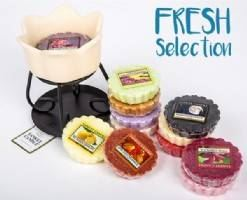 Melts + Cream Warmer Bundle - Fresh