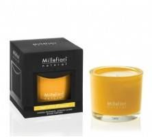 Millefiori Boxed Candle - Woods & Orange Blossoms
