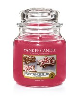 Frosty Gingerbread Medium Yankee Candle