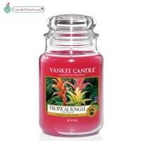 Tropical Jungle Large Yankee Candle